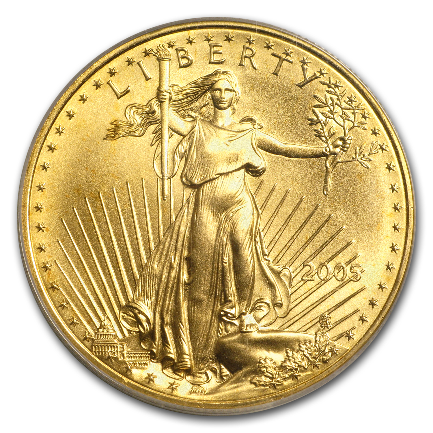 2005 1 oz Gold American Eagle MS-70 PCGS (20th Anniversary)